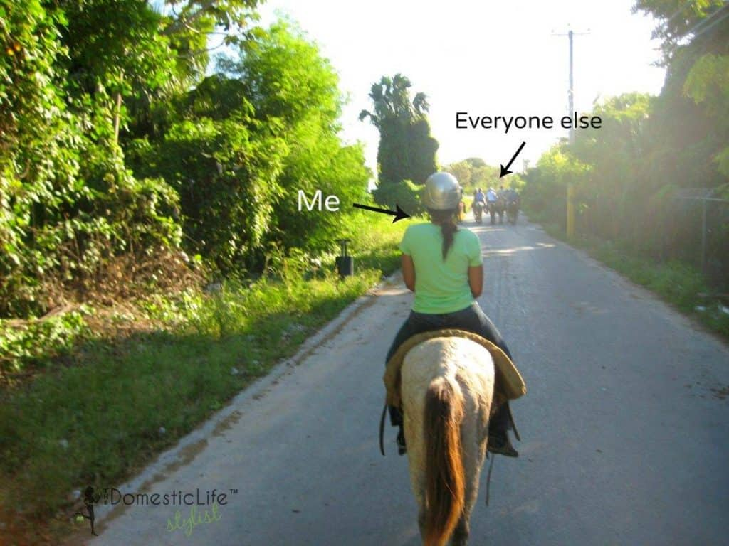 horseback riding in DR