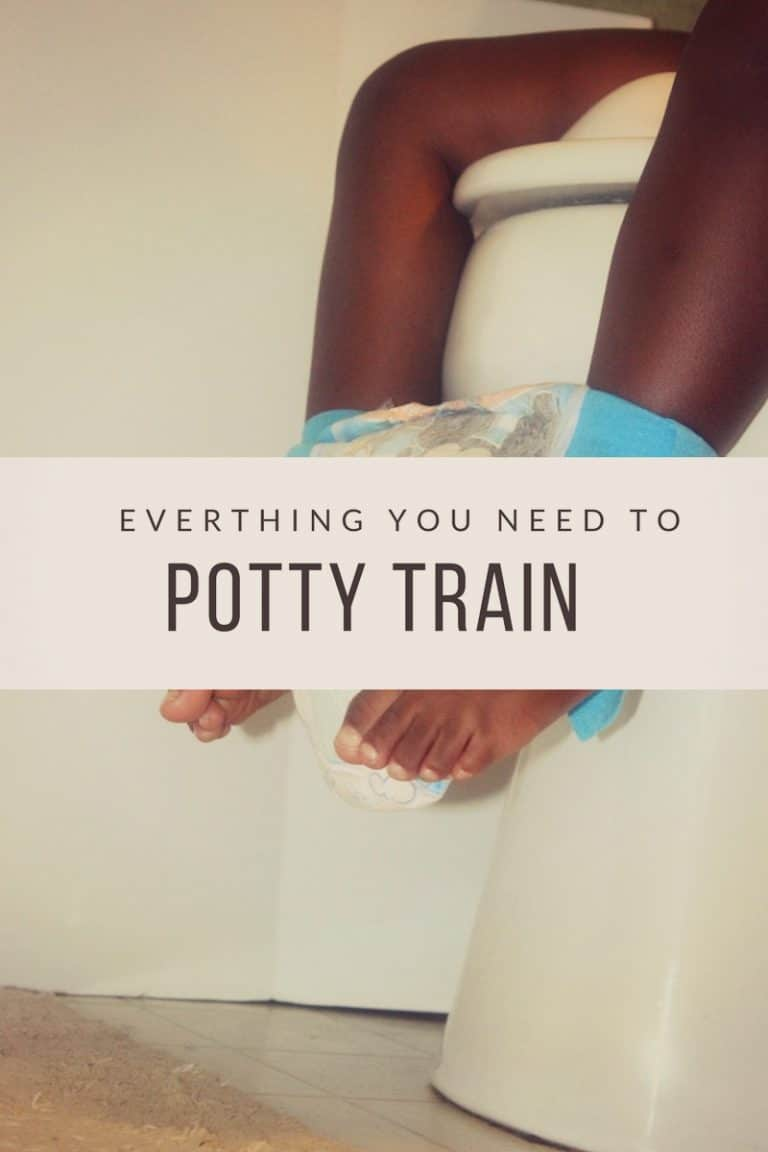 things you need to potty train