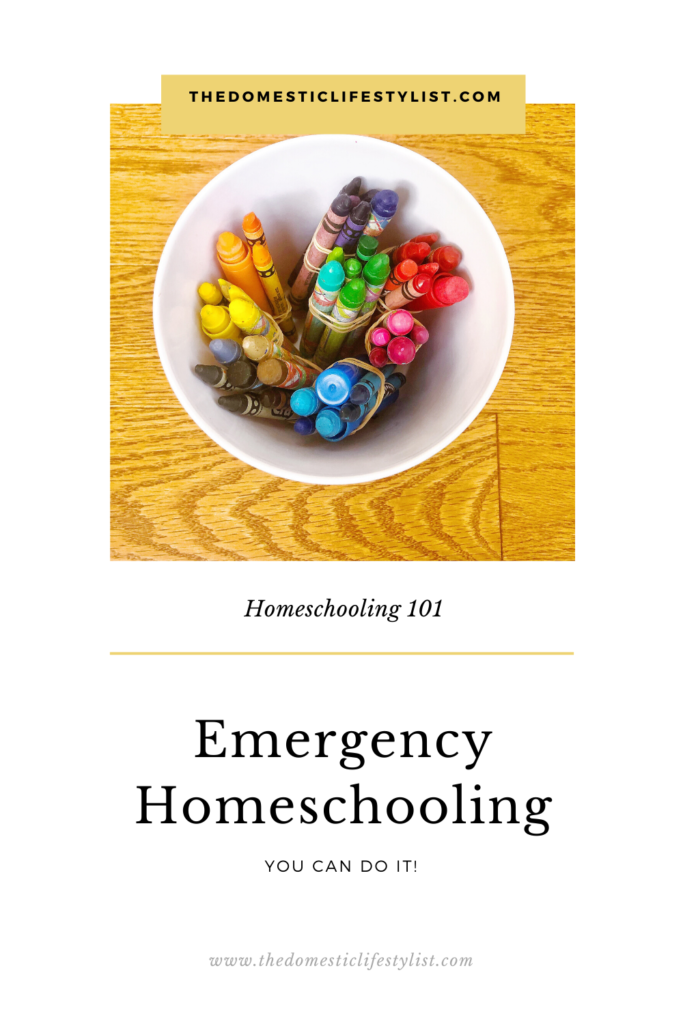 Emergency Homeschooling: You need to know this before you start.